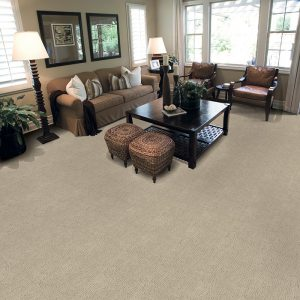 Fabrica Carpet Shorewood