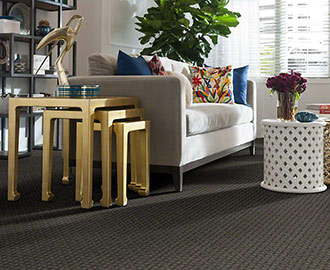 Shaw Carpet Twin Cities